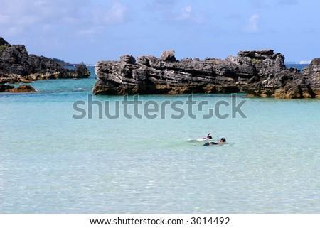 Snorkeling in Bermuda - stock photo