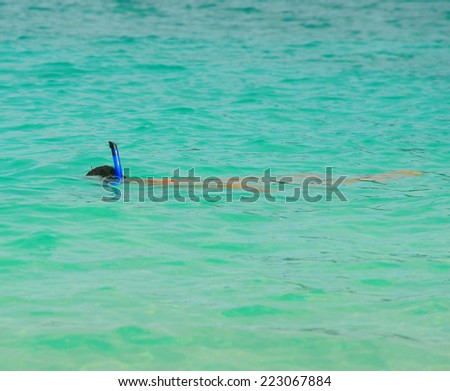 Snorkeling in the open sea on a sunny day - stock photo