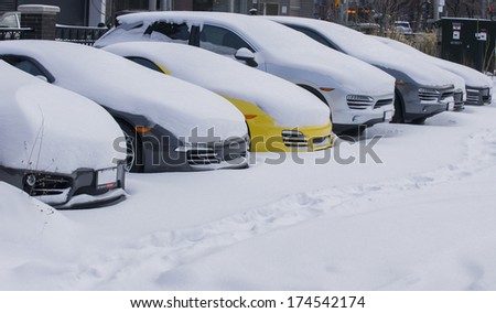 Snow  - stock photo