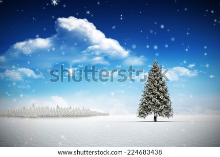 Snow against fir tree in snowy landscape - stock photo