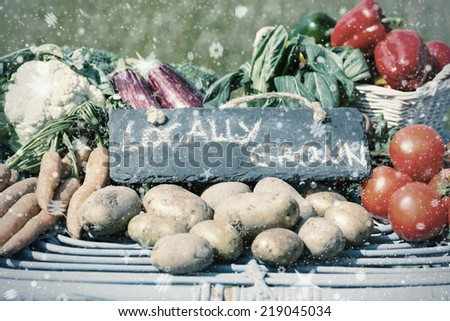 Snow against organic vegetables on a stand at a farmers market - stock photo