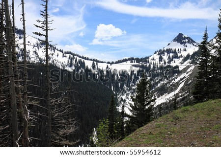 Snow capped mountain peaks along Chinook Pass in Washington State in early summer - stock photo