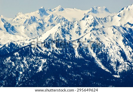 Snow Capped Mountains at Olympic National Park - stock photo