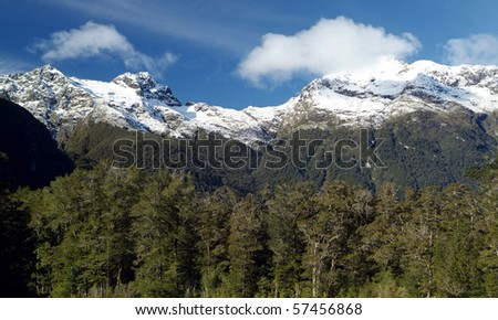 Snow capped peaks with dense forest