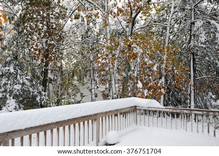 snow covered back yard deck and trees - stock photo