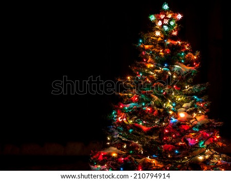 snow covered christmas tree with multi colored lights at night - Christmas Trees With Lights