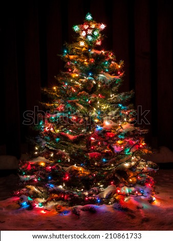 snow covered christmas tree with multi colored lights at night - Colored Christmas Trees