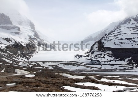 Snow-covered columbia icefield, jasper national park, alberta, canada  - stock photo