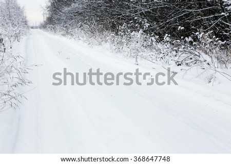 snow-covered dirt road running along the forest - stock photo
