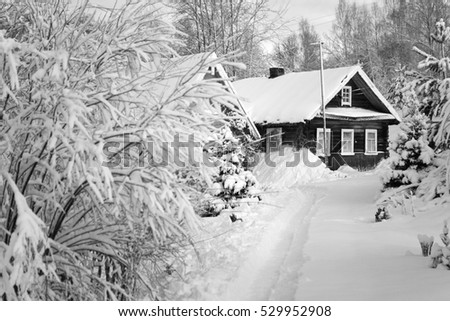 Snow-covered hut in a forest