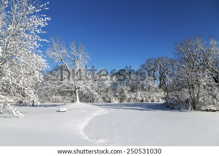 Snow Covered Lake and Trees - stock photo