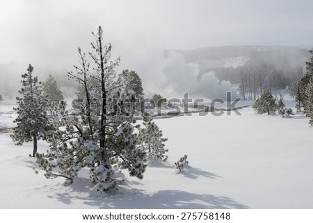 Snow-covered landscape with erupting geysers. Yellowstone National Park. - stock photo