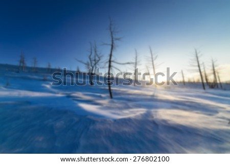 Snow-covered mountain slope with trees. Illuminated by low sun. Abstract blur background. - stock photo