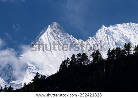 Snow-covered mountains near trees in the area of Annapurna in the clouds under a bright blue sky - stock photo
