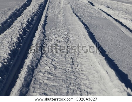 Snow covered path lined at december