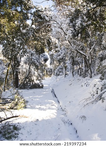Snow covered path near Barcelona, from the big snow that took place on march - stock photo