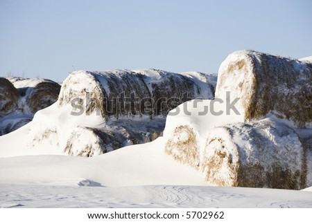 Snow covered pile of hay bales.