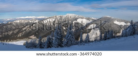 Snow-covered pine forest and skiers on ski run in the Tartas, Slovakia - stock photo