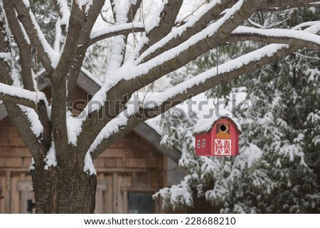 Snow covered red barn birdhouse hanging on tree outside near shed in backyard - stock photo