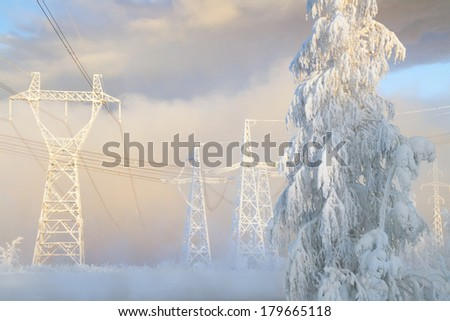 Snow-covered tree and large pulons of transmission lines in a strong frost, Russia, Siberia - stock photo