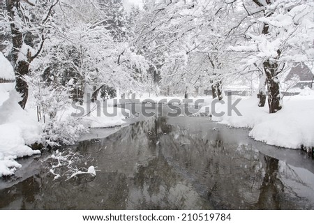 Snow-covered trees along icy mountain stream  - stock photo