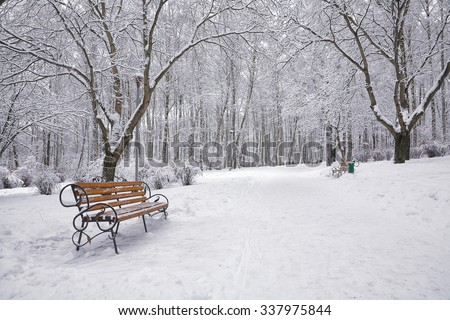 Snow-covered trees and benches in the city park. Lots of snow