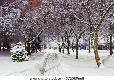 Snow covered trees with colored lights in a city Park in the evening. Russia. the city of Nizhny Tagil