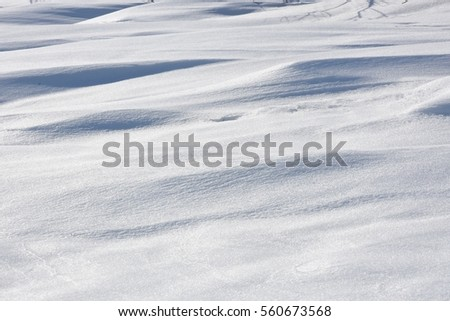 snow drift in cold winter day