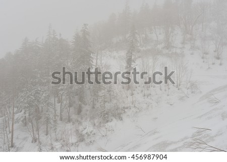 snow fall on the mountain with fog