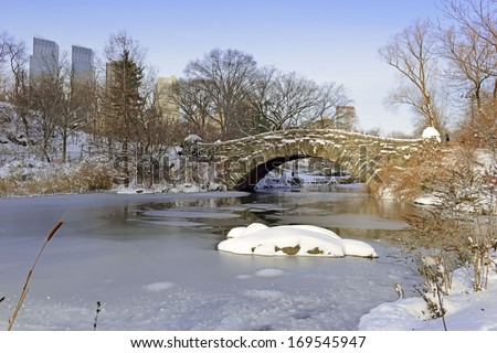 Snow in Central Park in Manhattan, New York City
