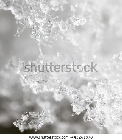 Snow in nature as a background. macro - stock photo