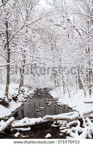 Snow kissed trees surround the fallen logs that cross the dark water of a winter stream.