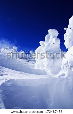 Snow monsters at Zao Mountain , Japan.