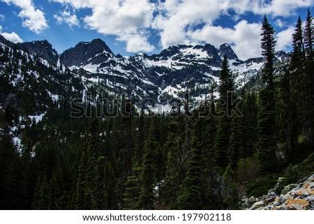 Snow Mountain Washington Alpine Forest - stock photo