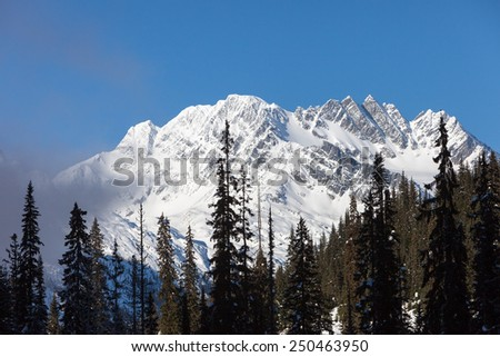 Snow Mountains above Forest  - stock photo