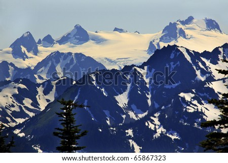 Snow Mountains Hurricane Ridge Olympic National Park Washington State Pacific Northwest Closeup Evergreen