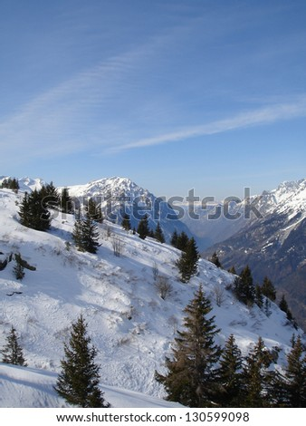 Snow mountainside with blue sky and evergreen trees - stock photo
