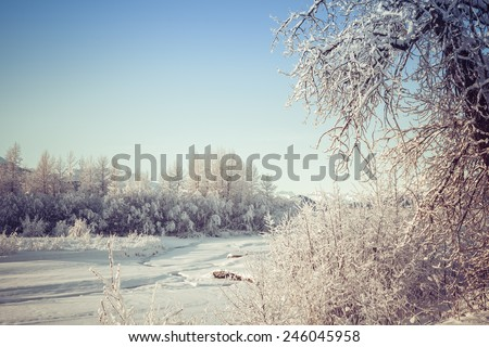 Snow on a frozen Chilkat River on a sunny winter day. - stock photo