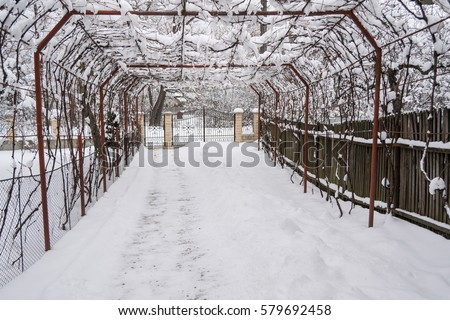 snow on metal vine canopy & Vine Canopy Stock Images Royalty-Free Images u0026 Vectors | Shutterstock
