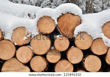 Snow on the timber stack - stock photo
