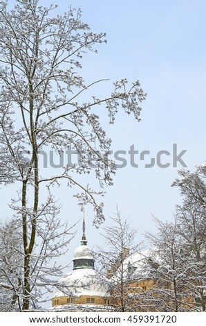 Snow on trees with the roof of a Swedish castle as background.