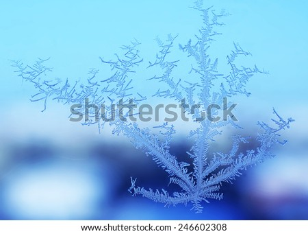 Snow pattern on the window on a blue background - stock photo
