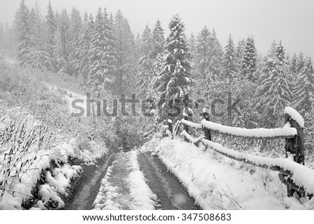 snow road in mountains