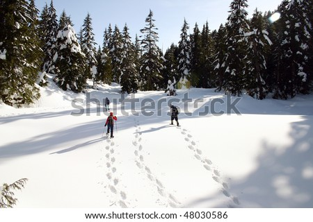 Snow shoe hikers cross the snow mountain in BC, Canada. - stock photo