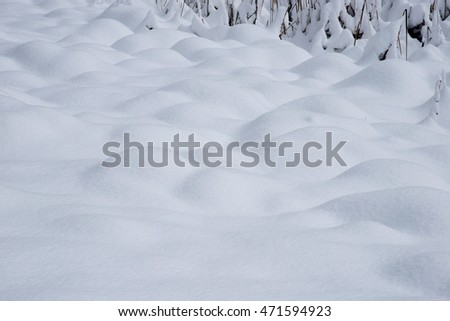 snow surface from yosemite winter