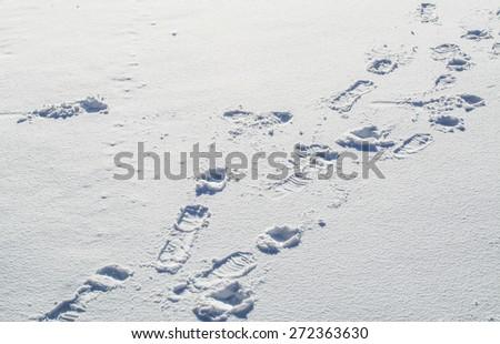 snow texture background - stock photo