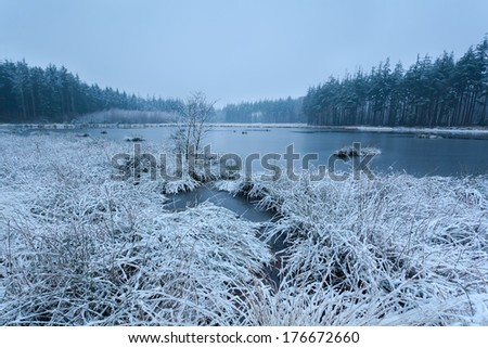 snow winter morning on lake, Friesland, Netherlands - stock photo