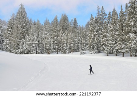 Snowboarder on the ski slope