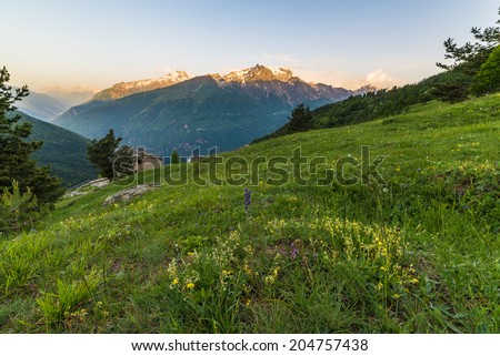 Snowcapped mountain peaks glowing at sunrise in the italian Alps with colorful meadows in the foreground. - stock photo
