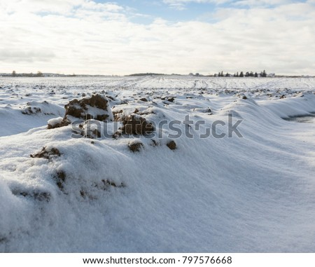 snowdrifts on a plowed field with black soil, winter territory